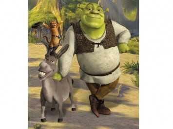 Shrek 43084