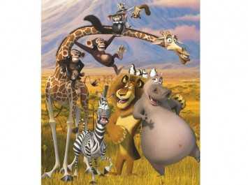 Madagascar 43091
