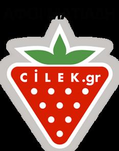 70d63a380da Παιδικά Έπιπλα-Παιδικά Δωμάτια Cilek. - Παιδικά έπιπλα Cilek